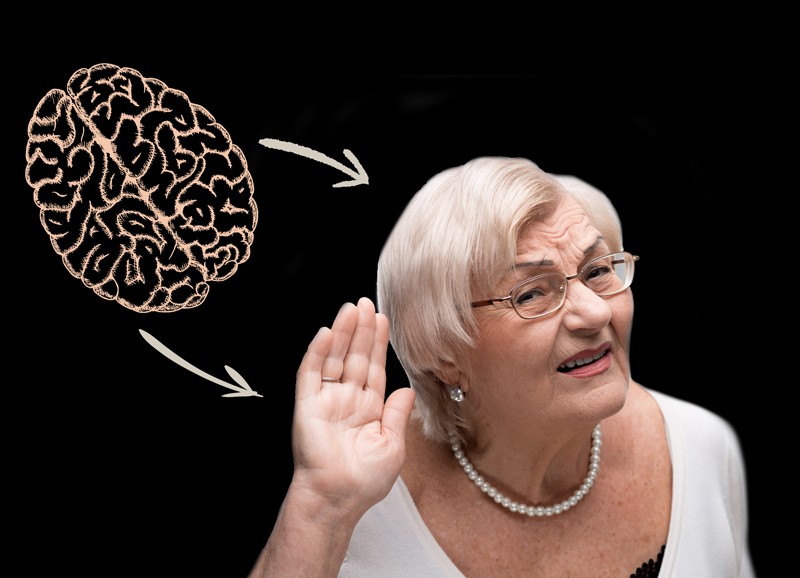 Hearing Health is Brain Health  How Hearing Aids Keep Your Brain Fit