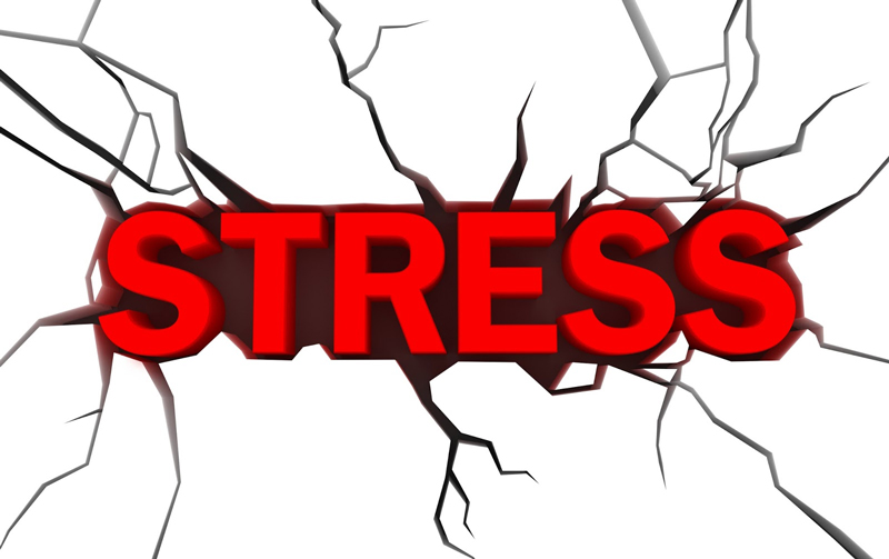 Stress: What's the Cost