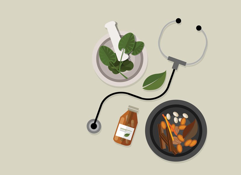 An Integrative Approach to Healing from Lyme Disease